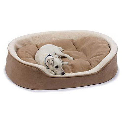 펫코 강아지 침대 Petco Oval Tan and Cream Lounger Dog Bed